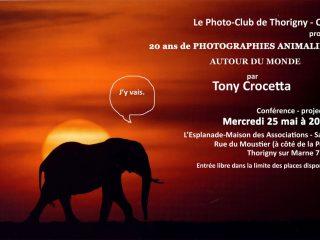 20 ans de photographies animalières par Tony CROCETTA