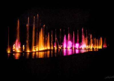 21_EAU_45x30_Filigraphe_Sur l'eau